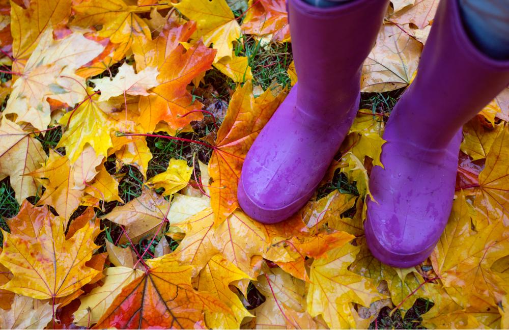 Hello Autumn, Goodbye Germs!
